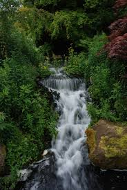 Edinburgh Botanic Gardens File Waterfall Edinburgh Botanical Garden Jpg Wikimedia Commons