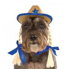 pet costume halloween cowgirl hat dog costume with braids with same day shipping baxterboo