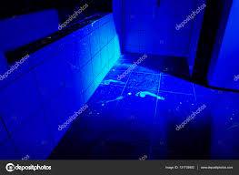 Uv Light Bathroom Crime Uv Light Stock Photo Couperfield 131735902