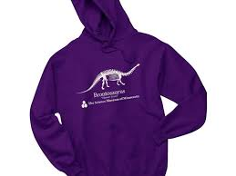 here u0027s how to buy a u0027stranger things u0027 purple brontosaurus hoodie
