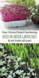 5976 best gardening indoors images on pinterest gardening