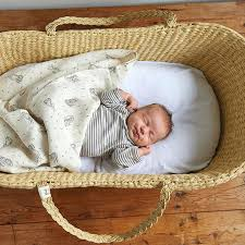 Baby Moses Basket Bedding Set Baby Moses Basket Bedding Babies R Us Moses Basket Bedding Set Hamze