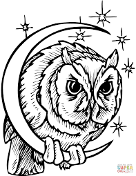 nocturnal animals coloring pages free printable pictures