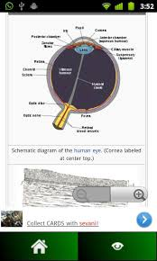 Human Anatomy Pdf Books Free Download Anatomy Guide Pocket Book Android Apps On Google Play