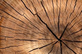 wood pics wood images pexels free stock photos