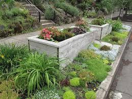 Sidewalk Garden Ideas Plan A Sidewalk Garden Sidewalk Garden Ideas And Success