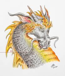 dragon fs photography