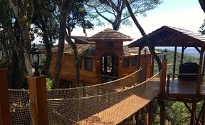 panama u0027s best new luxury treehouse hotel is ready to book u2013 lucero