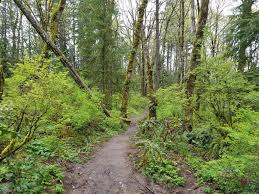 Forest Park Portland Map by Wildwood Trail And Leif Erickson Drive Trail Loop Oregon