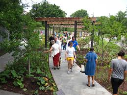 Botanical Garden Internship Herb Garden Botanic Garden