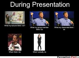 Success Meme Generator - during presentation what people think i do what i really do