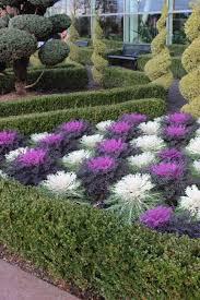 low maintenance low maintenance manicured gardens img garden trends