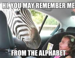 Happy Day Memes - sam mitchell on twitter happy hump day meme http t co vmovbhpmke