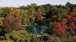 Auburn Botanical Garden Auburn Botanic Gardens Open Day Auburn Parraparents
