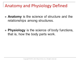 Anatomy And Physiology Introduction To The Human Body Introduction To The Human Body Tenth Edition Gerard J Tortora