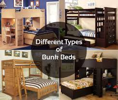 Types Of Bunk Beds Different Types Of Bunk Beds Interior Design Bedroom Color