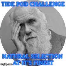 tide pod challenge natural selection at it s finest meme