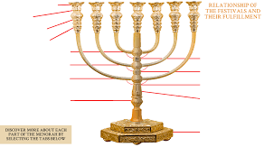 menorah tree of the appointed times