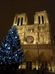 daily photo in paris notre dame 2010 christmas tree