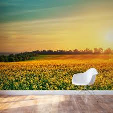 flower field at sunset wall mural