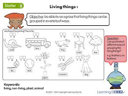 living things 1 a year 4 science worksheet