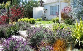 Home Design Los Angeles Landscape Designer Los Angeles Lightandwiregallery Com