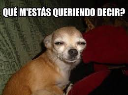 Memes De Chihuahua - qu礬 ser磧 compartirvideos imagenesdivertidas watsappss funny