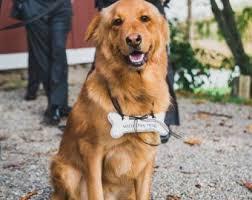 art deco dog ring holder images Animal ring holder etsy jpg