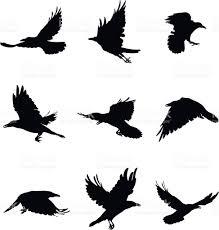 shapes of flying crows stock vector art 595132000 istock