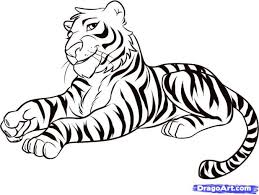 tiger pictures to draw wallpaper sportstle