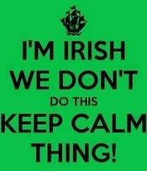 Funny Irish Memes - proud irish girl and friday frivolity linky party girl memes