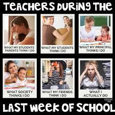 551 best teacher humor images on pinterest teacher funnies funny