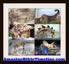 why doesn t the bible mention the dinosaurs amazing bible