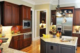birch wood honey raised door dark kitchen cabinets backsplash