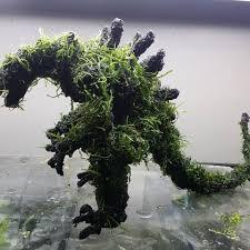 japanese aquascape aqua bonsai aquabonsai instagram photos and videos