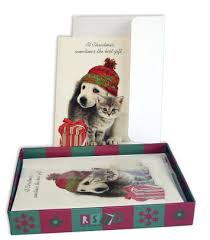 cat and dog friends christmas boxed cards 9781416201274 item