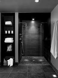 Plumbing For Basement Bathroom by Basement Bathroom Shower Zamp Co