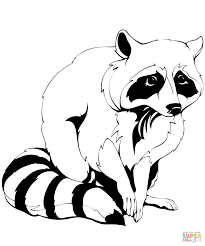 raccoon coloring page free printable coloring pages