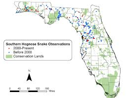 Southern Florida Map by Rare Snake Registry