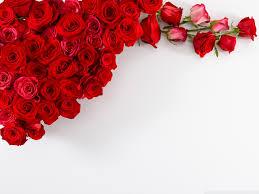 wedding flowers hd roses wedding bouquet hd desktop wallpaper high definition