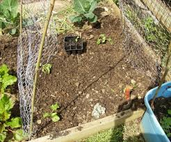 how to build a low cost vegetable garden trellis 5 steps with