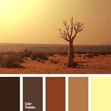 Light Brown Color Best 25 Brown Light Shades Ideas On Pinterest Hair Colour