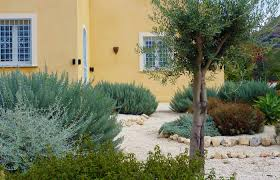coolest mediterranean garden design with additional home decor