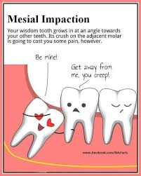 Funny Dental Memes - image result for puns about teeth randomness pop culture and