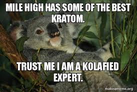 High Koala Meme - mile high has some of the best kratom trust me i am a kolafied