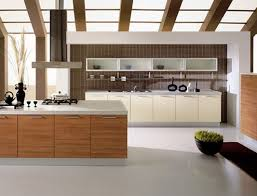 kitchen terrific modern kitchen cabinets at lowes noticeable