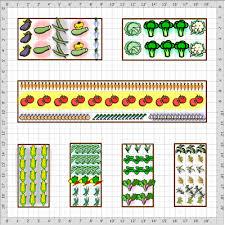 Garden Plot Layout Vegetable Garden Plot Layout Vegetable Garden Layout Basics Veggie