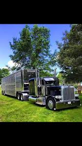 peterbilt show trucks best 25 peterbilt trucks ideas on pinterest semi trucks