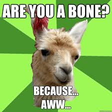 Pick Up Line Panda Meme - terrible pick up line llama sap cross bad pickup line panda memes