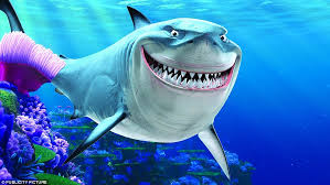 video shows shark camera goofy smile finding nemo u0027s